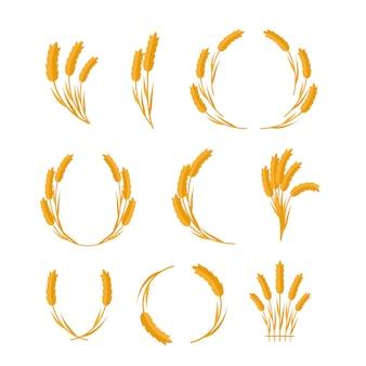 Insieme di spighe di grano concetti vettoriali in design piatto.
