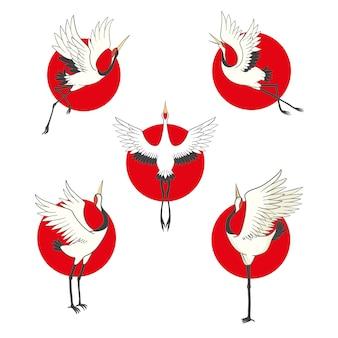 Insieme di uccelli gru, cicogna, airone. .