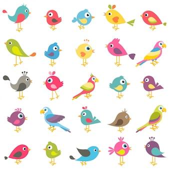 Insieme di uccelli simpatico cartone animato