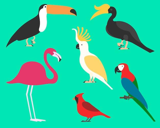 Insieme di uccelli, sullo sfondo. diverso stile tropicale e domestico, stile cartoon semplice per loghi.