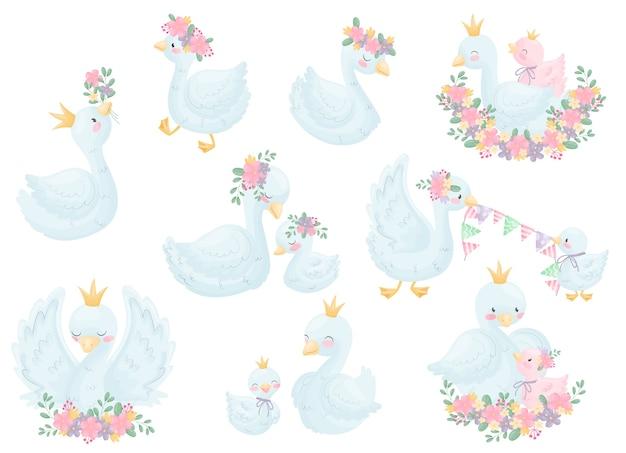 Insieme di vari cigni di immagine in una corona e fiori. illustrazione su sfondo bianco.