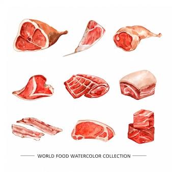 Insieme di varia illustrazione isolata dell'acquerello della carne
