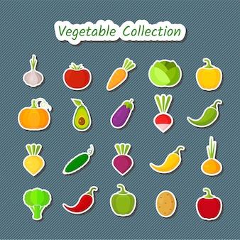 Insieme di verdure dell'icona di progettazione sveglia delle toppe isolate