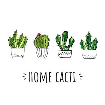 Insieme di vettore dei cactus domestici. stile disegnato a mano.