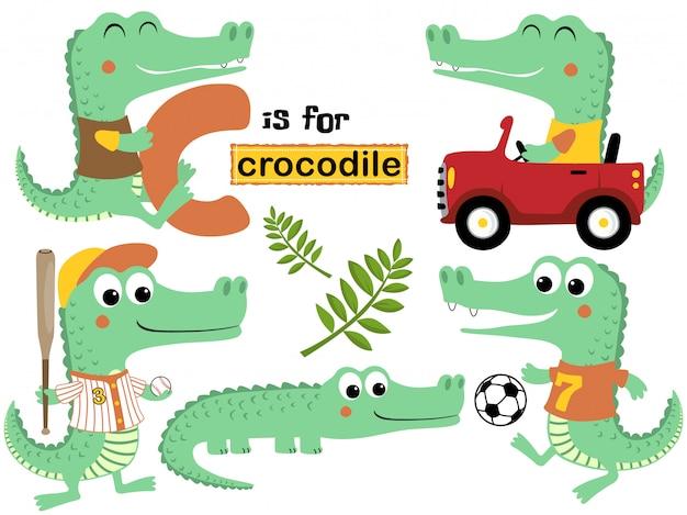 Insieme di vettore del fumetto del coccodrillo con varie attività