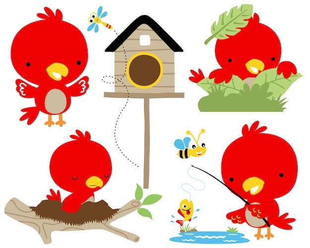 Insieme di vettore dell'illustrazione rossa del fumetto dell'uccello