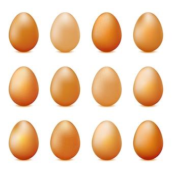 Insieme di vettore delle uova realistiche isolate su bianco