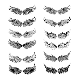 Insieme di vettore di angelo di ali