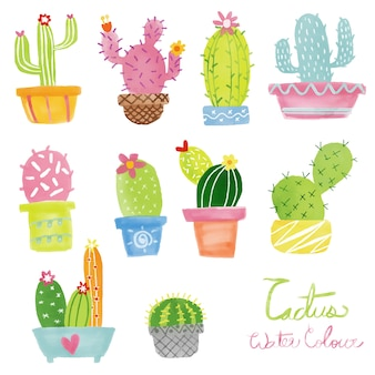 Insieme di vettore di cactus pastello dell'acquerello