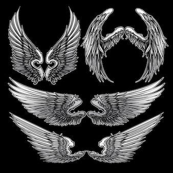 Insieme di vettore di raccolta di ali