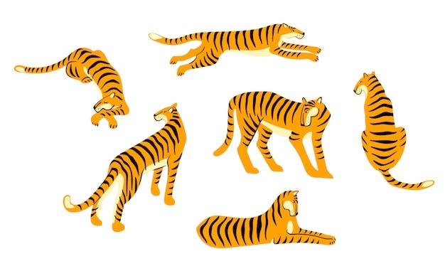 Insieme di vettore di tigri carine