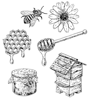 Insieme disegnato a mano del miele di stile di schizzo dell'inchiostro