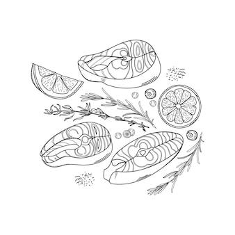 Insieme disegnato a mano di bistecche di salmone, fette di limone, rosmarino, timo e piselli pepe nero.