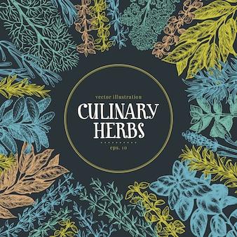 Insieme disegnato a mano di erbe e spezie culinarie.