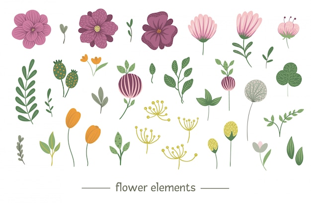 Insieme floreale di clipart di vettore. illustrazione piatta alla moda con fiori, foglie, rami. prato, bosco, elementi forestali isolati