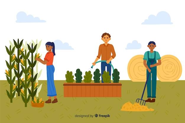 Insieme illustrato di agricoltori che lavorano