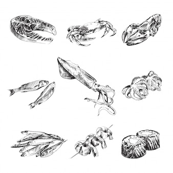 Insieme in bianco e nero dell'illustrazione dei frutti di mare