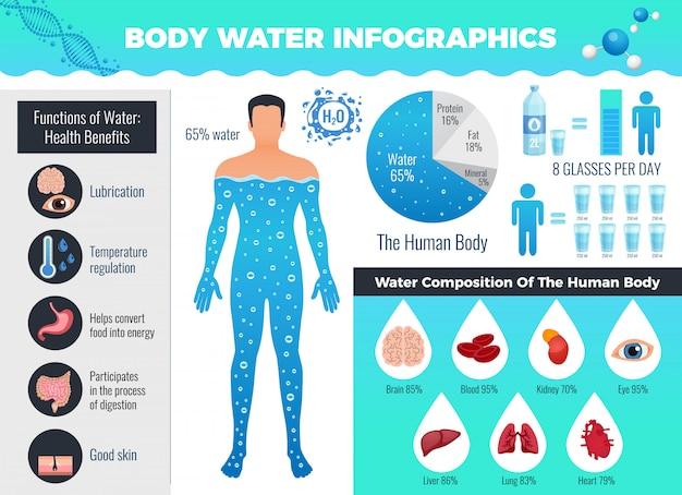 Insieme infographic dell'acqua e del corpo con bilancio idrico, illustrazione piana di vettore