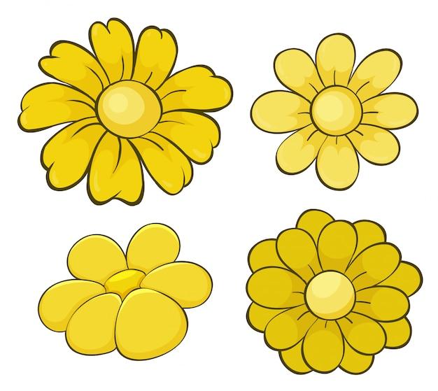 Insieme isolato dei fiori nel giallo