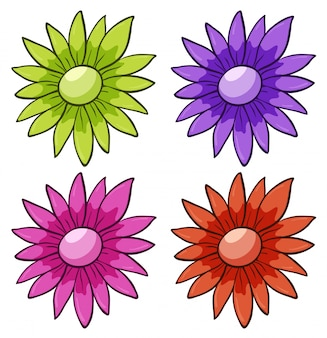 Insieme isolato di fiori