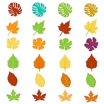 Insieme isolato foglie colorate