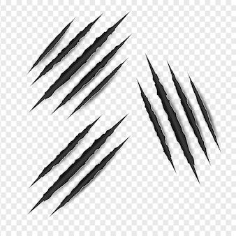 Insieme isolato graffi di artigli