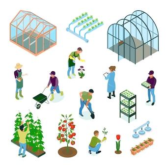 Insieme isometrico degli elementi dell'irrigazione delle facilità di irrigazione di coltivazione dei fiori delle verdure del sistema idroponico della serra