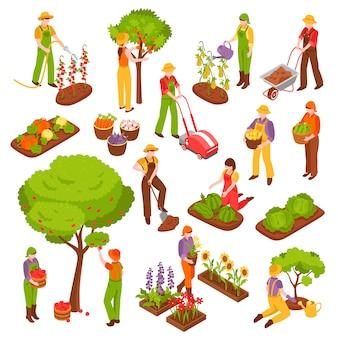 Insieme isometrico di giardinaggio