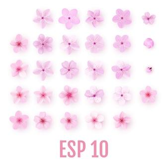 Insieme realistico dell'icona dei petali di rosa sakura. fiori di ciliegio
