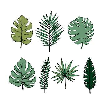 Insieme realistico dell'illustrazione di vettore delle foglie tropicali