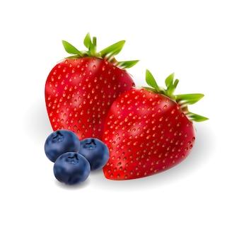 Insieme realistico della berrie della fragola e della mora. 3d