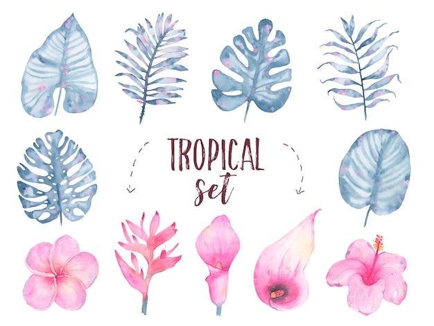 Insieme tropicale dipinto a mano del giglio di calla dell'ibisco del frangipane del fiore della foglia dell'indaco dell'acquerello isolato su bianco