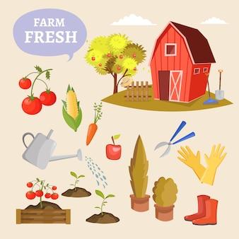 Insieme variopinto dell'icona dell'illustrazione dell'azienda agricola degli elementi di disegni del giardino di attrezzatura, di strumenti, di verdure e di piante di giardinaggio differenti.