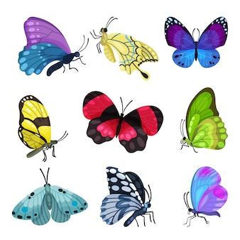 Insieme variopinto della farfalla, belle illustrazioni di insetti volanti su una priorità bassa bianca