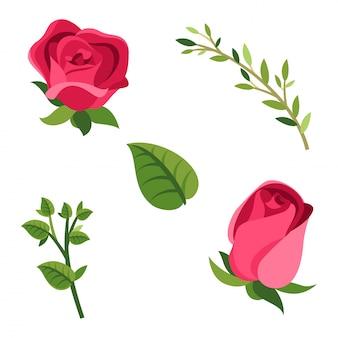 Insieme vettoriale di rose