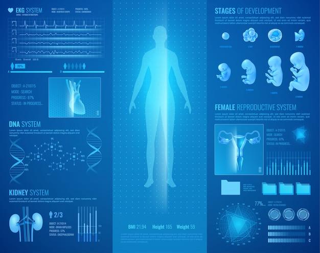 Interfaccia medica hud con cuore e sistema renale realistici