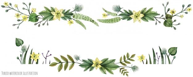 Intestazione dell'acquerello di piante selvatiche