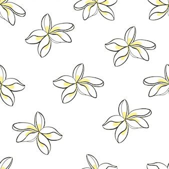 Jasmine flower seamless