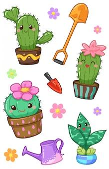 Kawaii di cactus