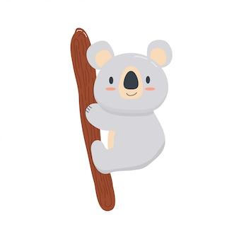 Koala bambino carino su un ramo