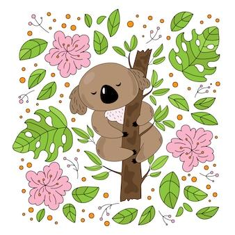 Koala garden orso australiano fiore