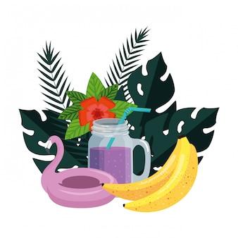 L'estate abbellisce le piante con galleggiante fiammingo e cocktail