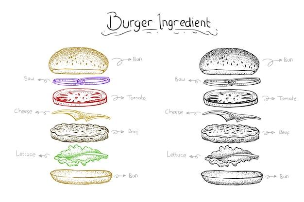 L'illustrazione dell'hamburger dell'ingrediente. stile disegnato a mano di vettore