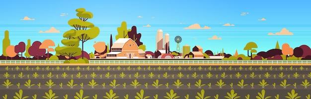 L'insegna orizzontale piana del fondo del paesaggio della campagna del campo del terreno coltivabile di concetto di agricoltura e di agricoltura della piantagione delle file di recente giovane germinato di file