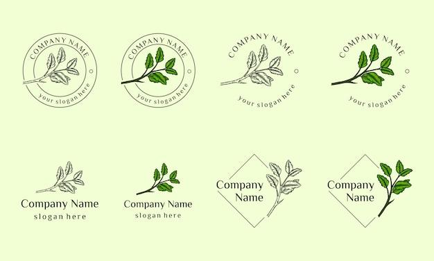 La collezione di design del logo di cosmetici naturali può essere utilizzata per salone di bellezza, spa, yoga, moda, illustrazione foglia disegnata a mano