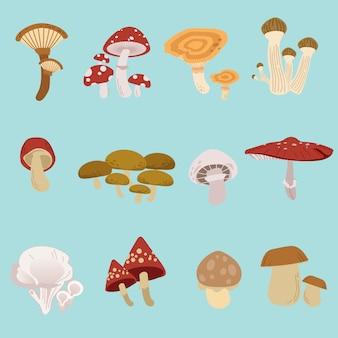 La collezione di set di funghi