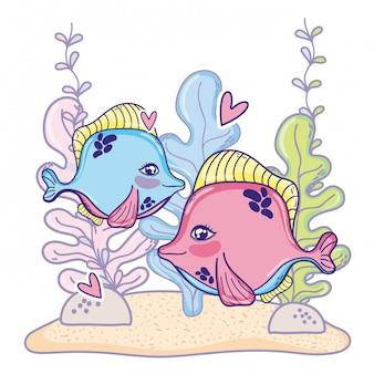 La coppia carina pesca l'animale con le piante dell'alga
