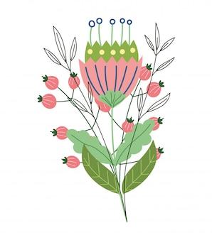 La crescita del germoglio del fiore lascia la botanica selvaggia dell'erba