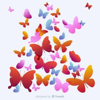 La farfalla dello sciame profila il fondo