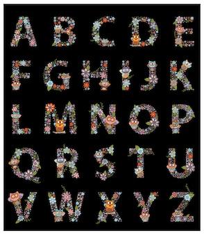La lettera AZ alfabeto gufo